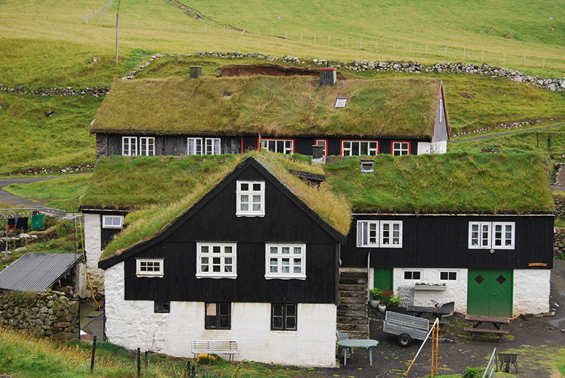 Typical grass-roofed houses