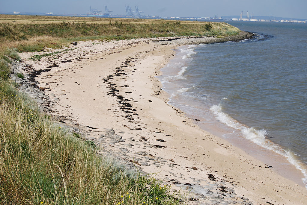 Tom Chesshyre Egypt Bay Hoo Peninsula